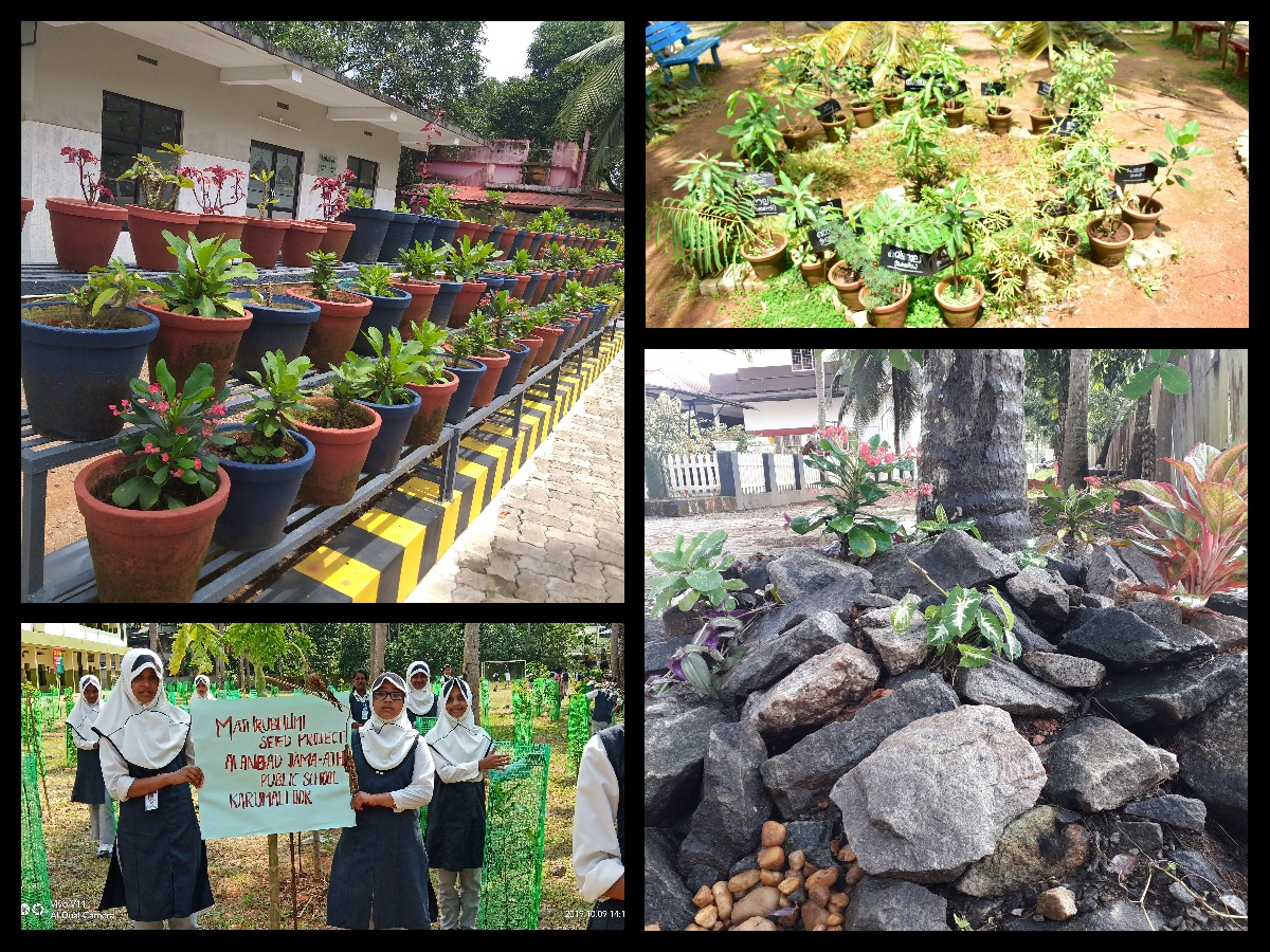 Gardening by AJPS Students